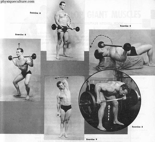 course for bodybuilders