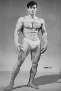 male physique muscle model
