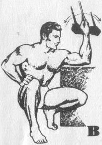 exercise for muscle training picture