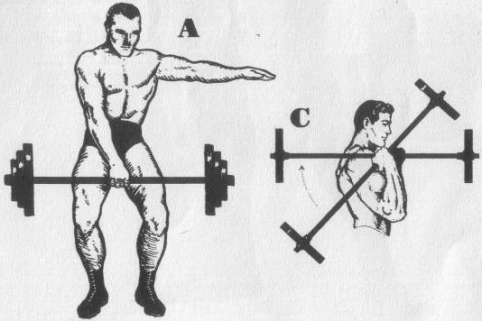 muscle training exercises drawing