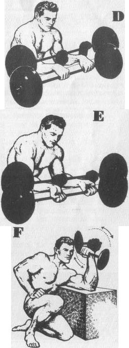 forearms and grip muscle training drawings