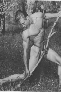 beautiful muscle man vintage photo