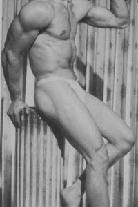 handsome vintage bodybuilder