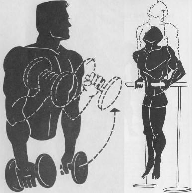 simple bodybuilding exercises
