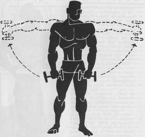 exercise for bodybuilding