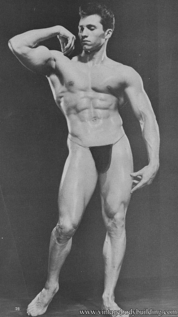 dabidean ideal in bodybuilding