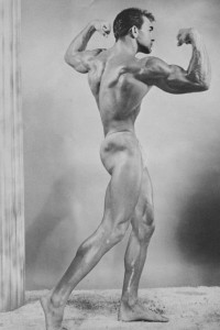 vintage physique male photo