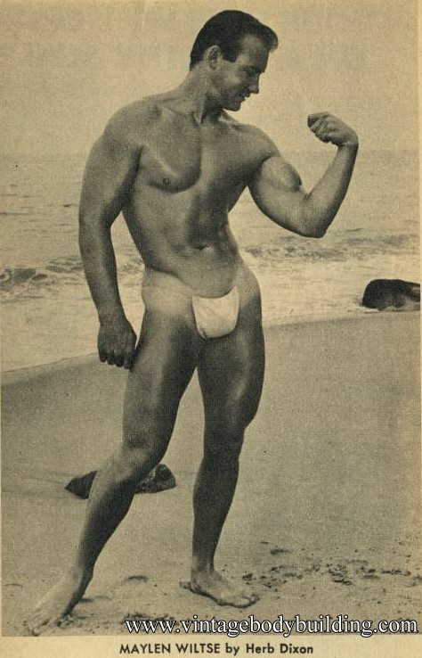 bodybuilder Maylen Wiltse